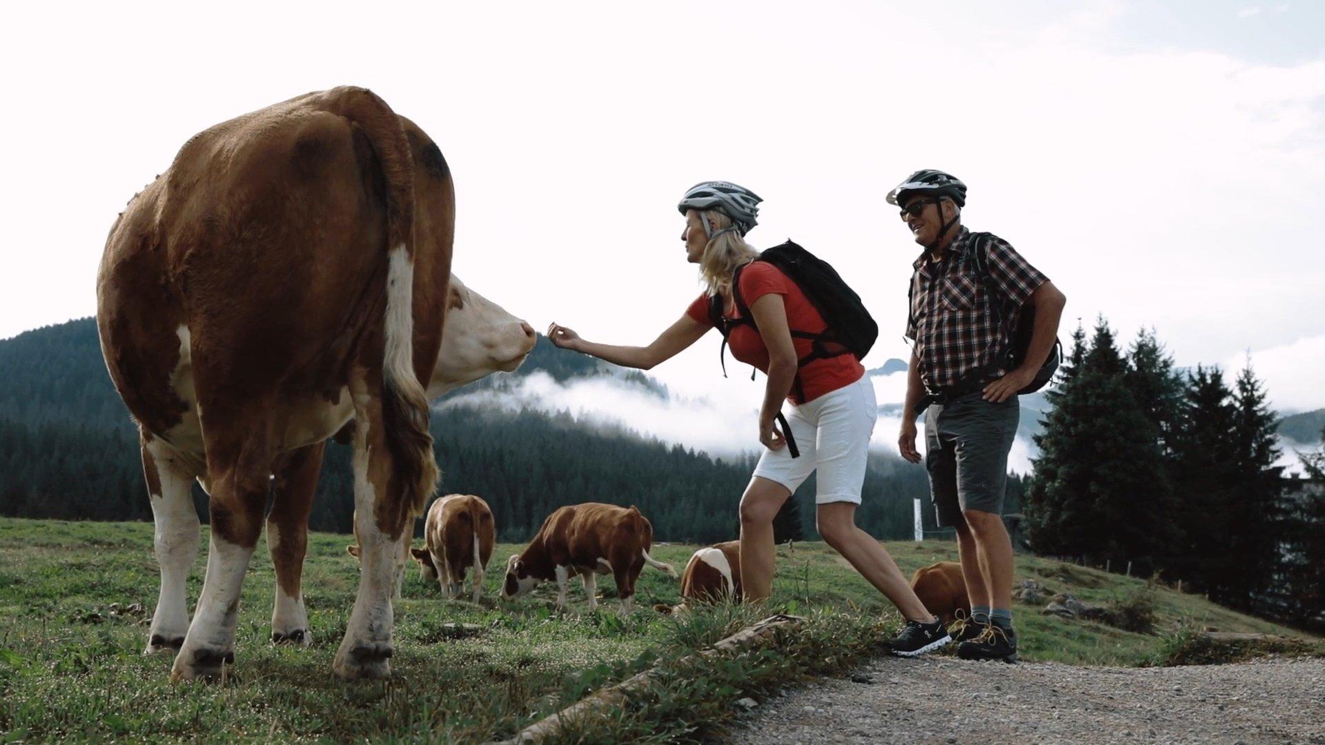 Chiemgau g'filmt - #14 Motiviert & motorisiert